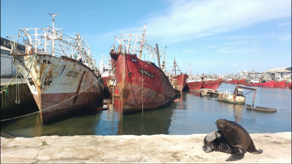 Desde Mar del Plata sostienen que la industria naval esta fuera de agenda