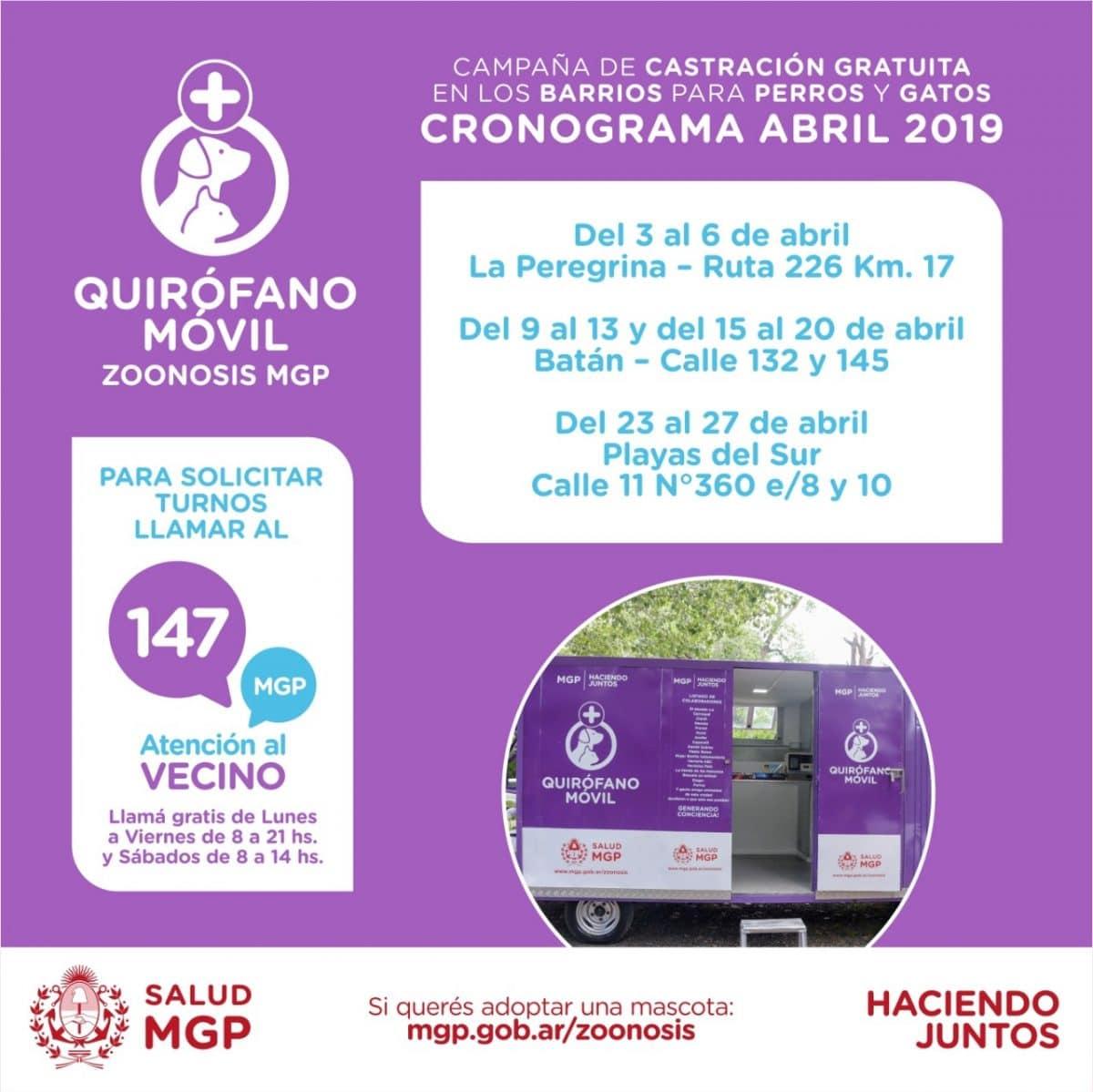 El Quirófano móvil para mascotas ya funciona en La Peregrina