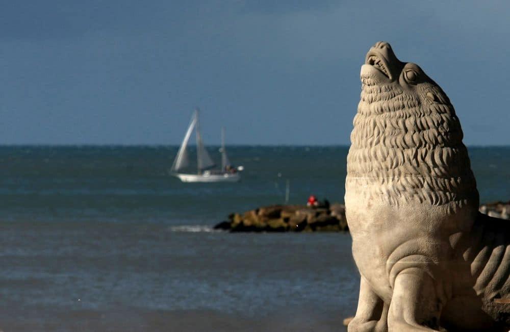 Febrero: la temperatura del mar promedió los 21,1º