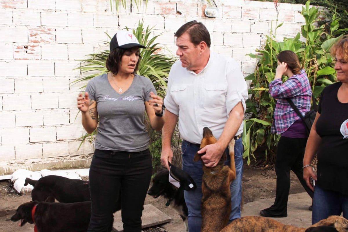 """Montenegro: """"el municipio debe hacerse cargo del control de la fauna urbana y del bienestar del animal"""""""