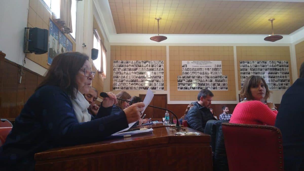 Mamás en Lucha: Morro pidió el cumplimiento del programa Incluir Salud y el HCD apoyo por unanimidad