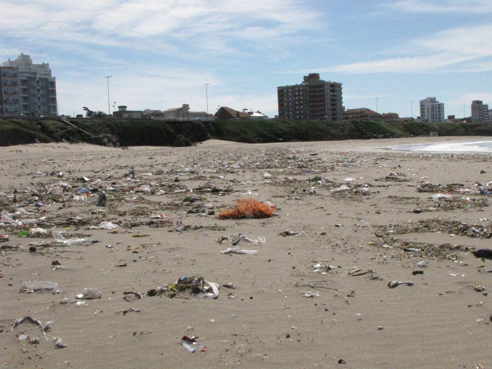 Más del 80% de los residuos encontrados en las playas bonaerenses son plásticos
