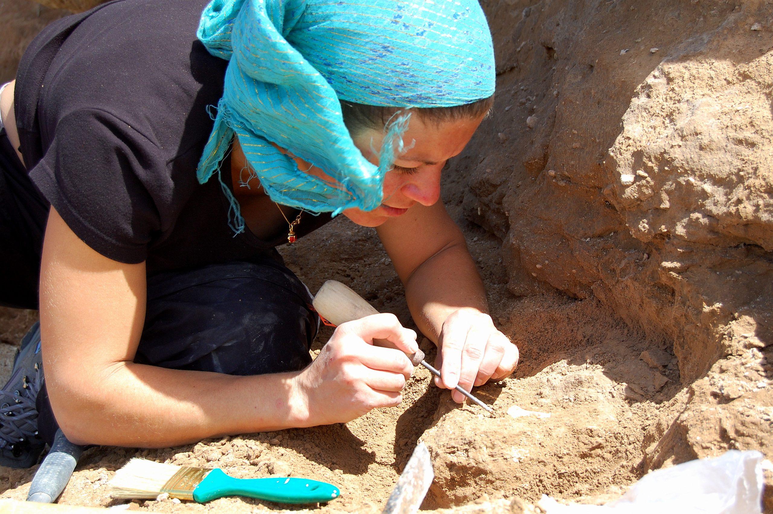 Hallaron una rata espinosa fósil de más de 400 mil años de antigüedad