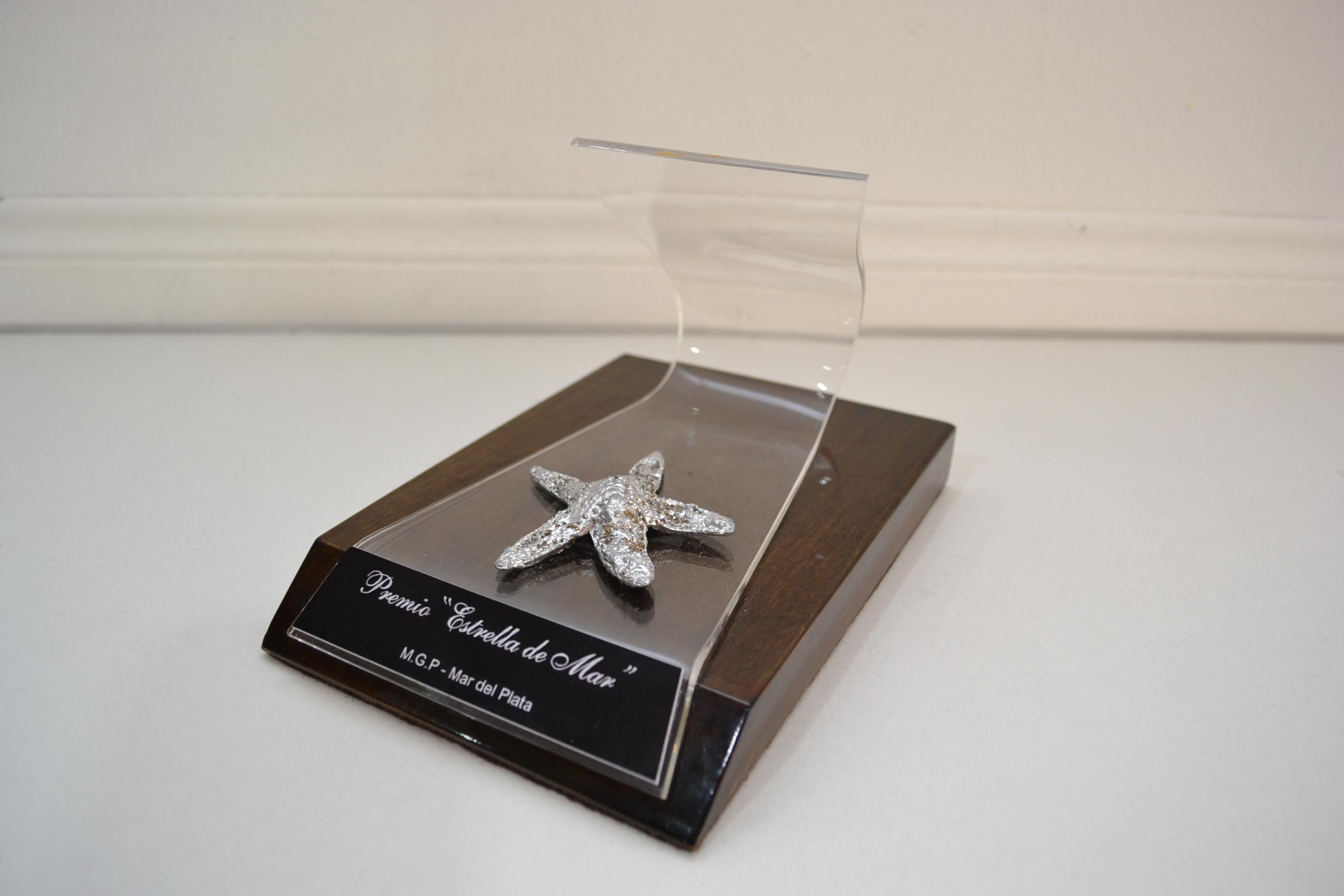 Premios Estrella de Mar: cerca de 240 obras inscriptas