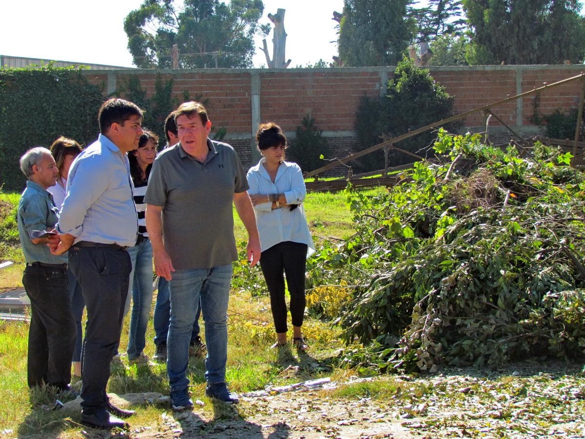 """El Municipio lanzó el Plan Forestar MGP, """"Hacia una ciudad más sostenible"""""""