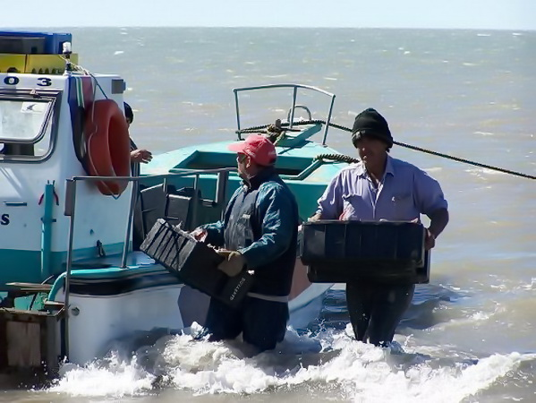 Pescadores artesanales piden reactivar el sector