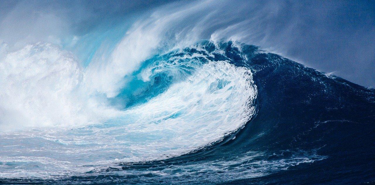 """Día de los Océanos: el INIDEP invita a conocer un poco más sobre cómo afecta """"nuestra huella"""" al mar"""