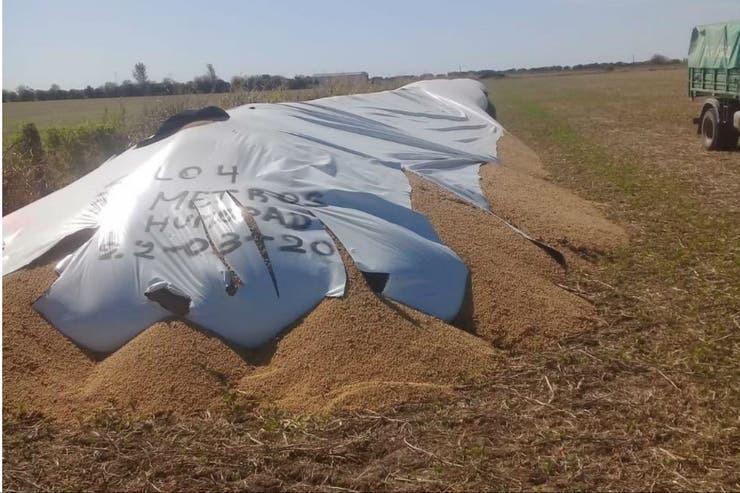 Piden abrir investigación por ataques vandálicos contra el sector agropecuario