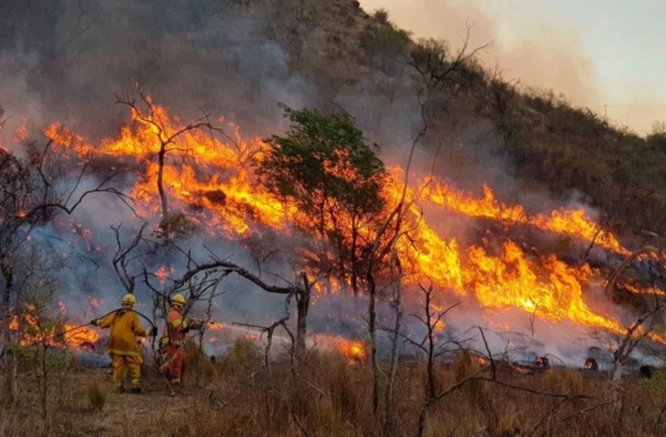 Reconocimiento a la Brigada Forestal de Mar del Plata por su labor en incendios