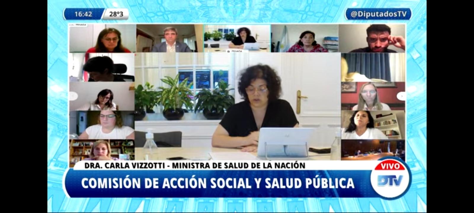 Vizzotti expone ante la comisión de Salud de la Cámara de Diputados