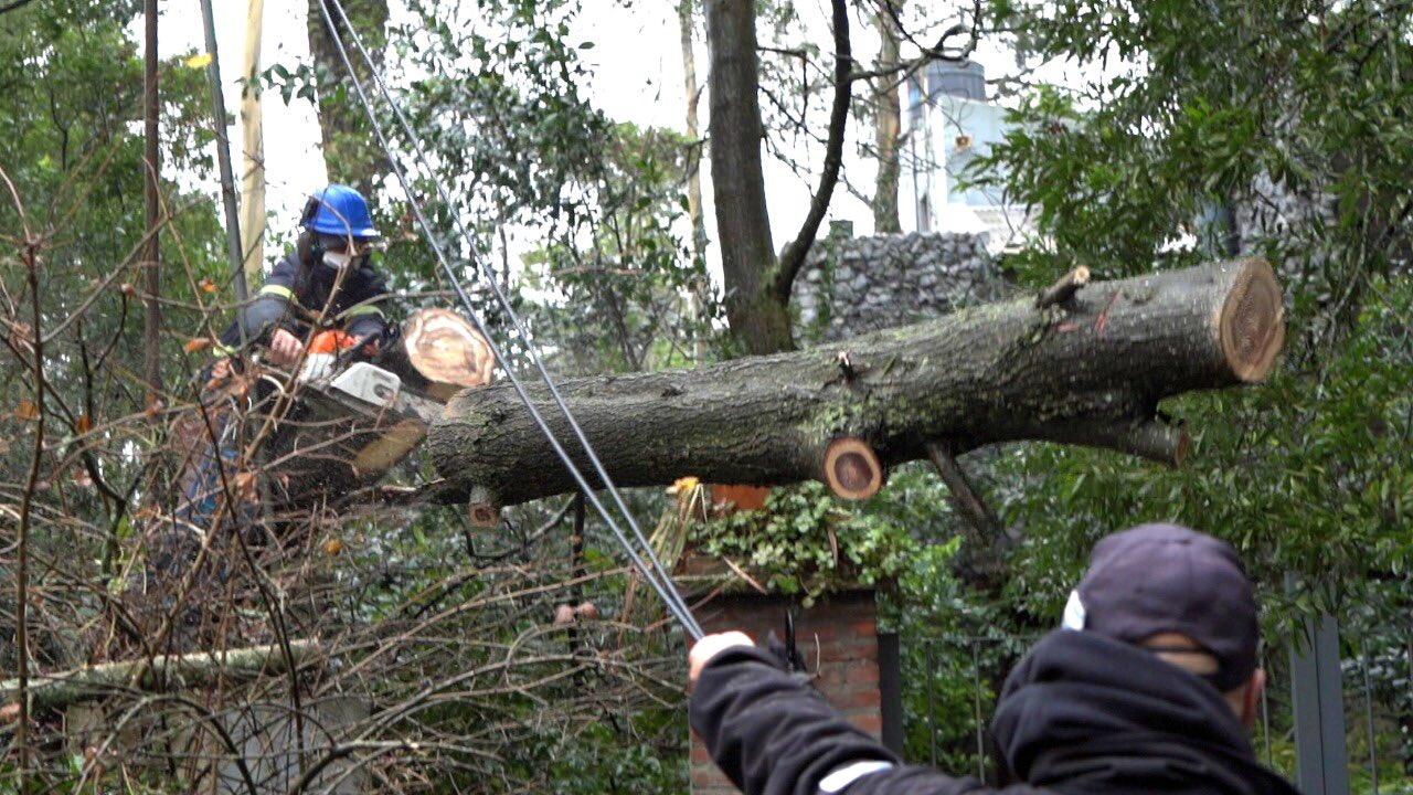 Voladura de techos, árboles caídos y una familia evacuada, saldo del temporal