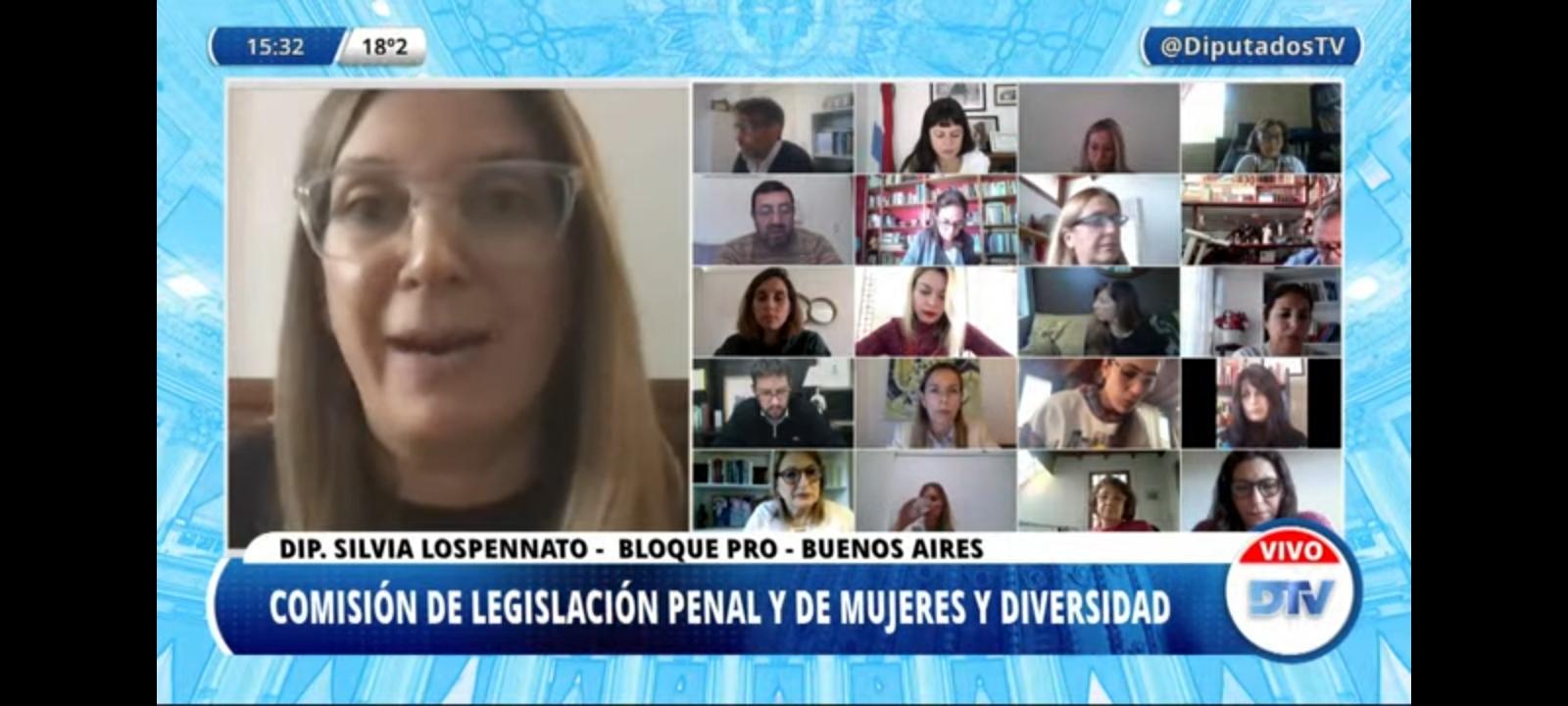 Diputados debate la incorporación de la perspectiva de género en la figura de legítima defensa
