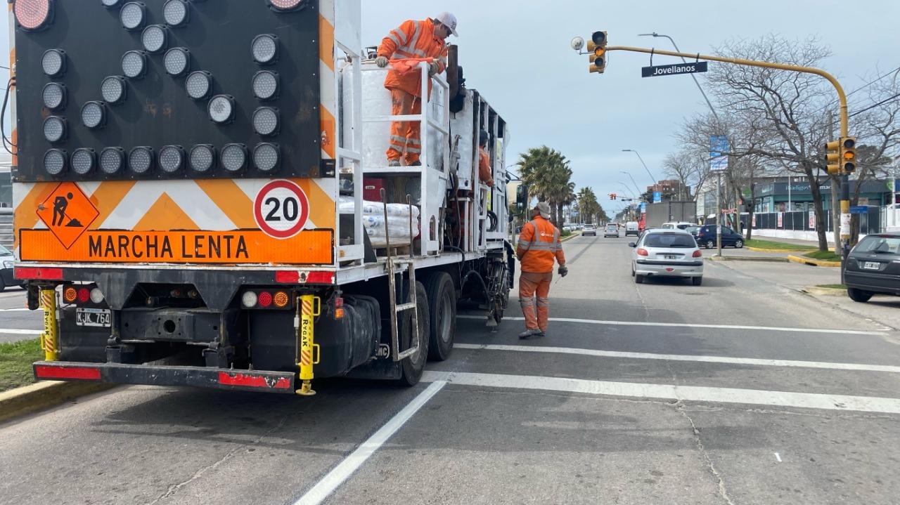 Avanza la señalización y demarcación vial de las principales avenidas