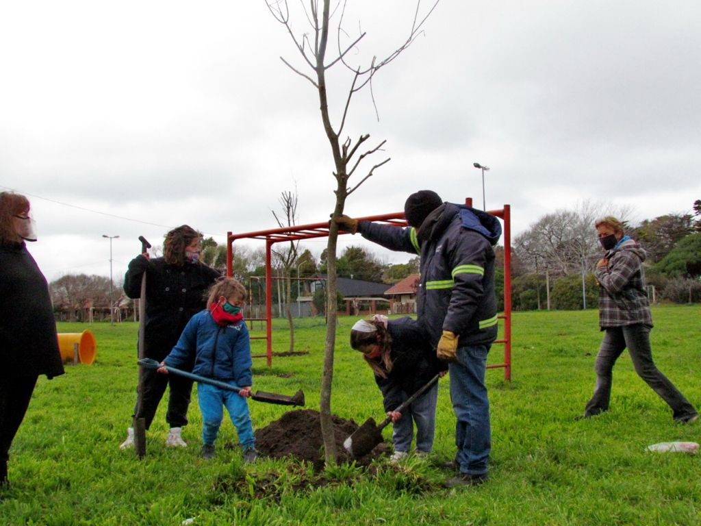 Ya se plantaron más de 2 mil árboles en 44 barrios de Mar del Plata