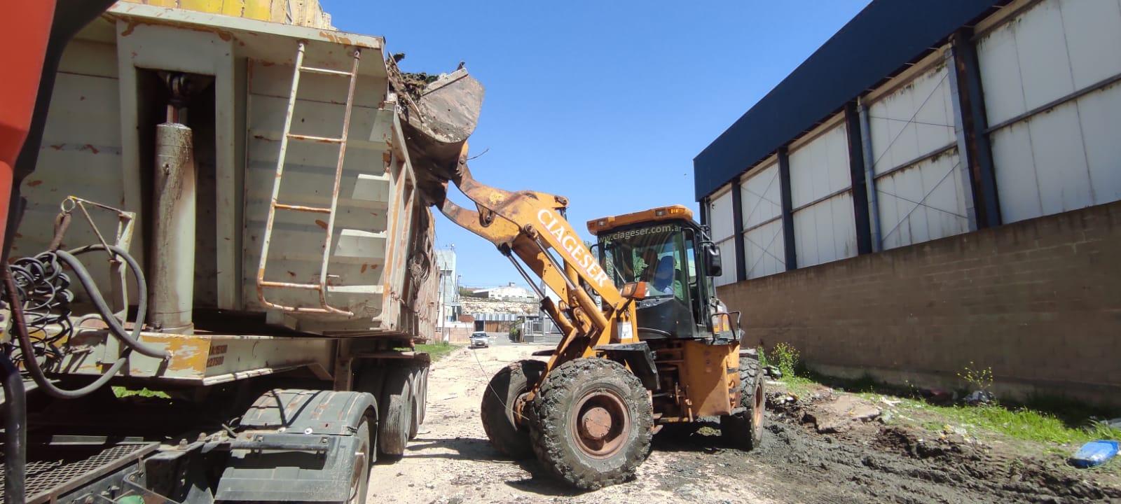El municipio retiró más de 45 toneladas de residuos en el Puerto