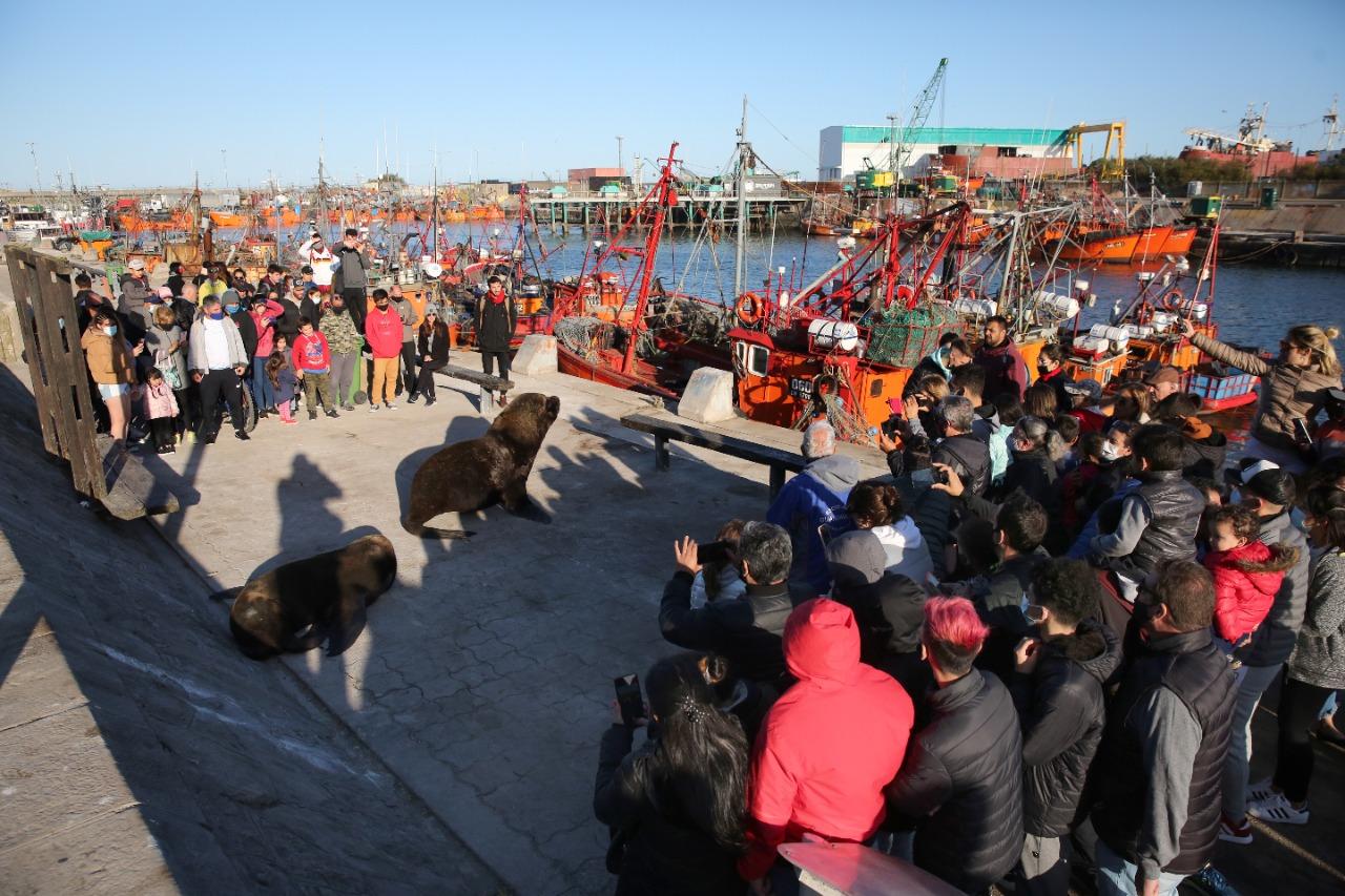 Mar del Plata récord: 168.031 turistas la eligieron durante el fin de semana  extra largo – Punto Noticias